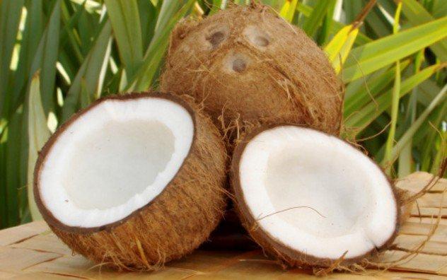 coconuts-e1379026555528.jpg