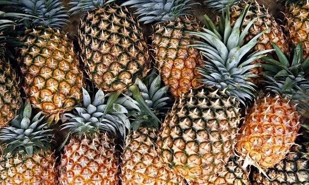 group-of-pineapples-010